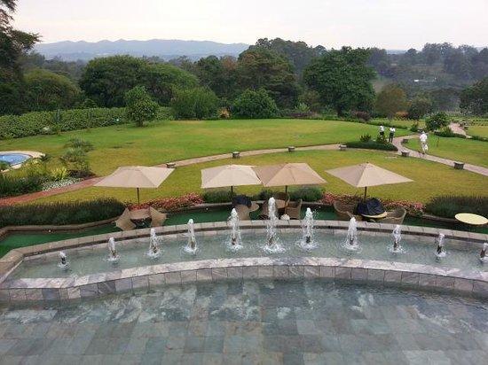 Hemingways Nairobi: Trädgården