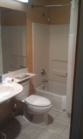 Microtel Inn & Suites by Wyndham Newport News Airport : Bathroom