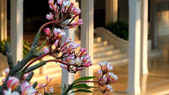 Centara Grand Beach Resort & Villas Hua Hin: Front entrance to the lobby