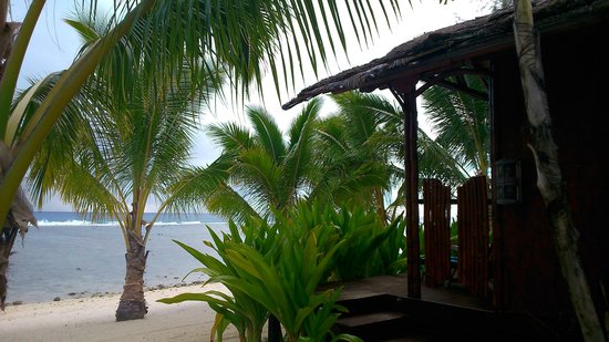 Magic Reef Bungalows: Blick vom Bungalow zum Strand