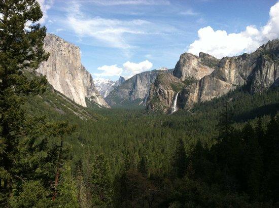 Yosemite Valley: Valley