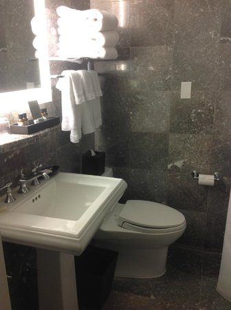 Fairmont Copley Plaza, Boston: Nice clean bathroom