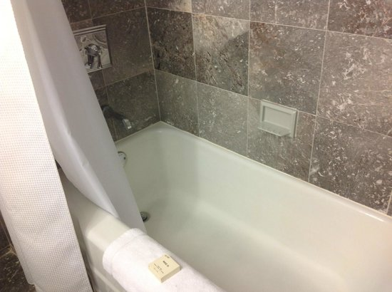 Fairmont Copley Plaza, Boston: Bath was clean
