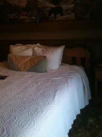 Gatlinburg Inn : bed