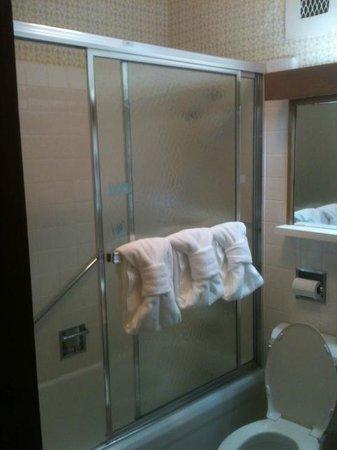 Gatlinburg Inn : bathroom