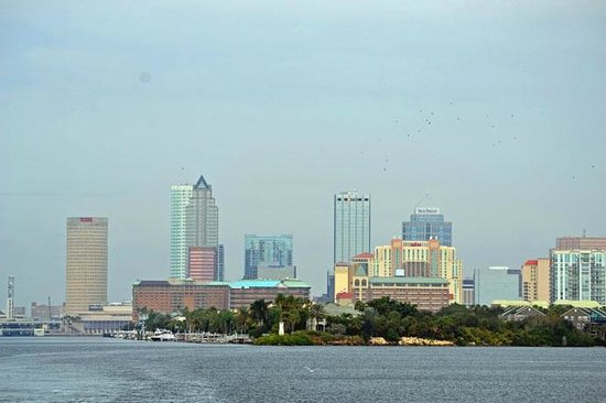 Four Points by Sheraton Suites Tampa Airport Westshore : Tampa skyline from the water