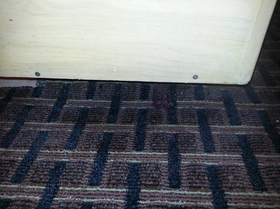 Econo Lodge : Gaps between carpet and walls