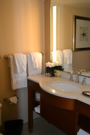 Four Points by Sheraton Suites Tampa Airport Westshore: Tiny bathroom