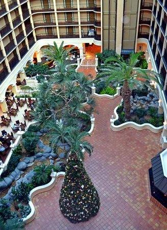 Sheraton Suites Tampa Airport Westshore: Atrium with restaurant on the left