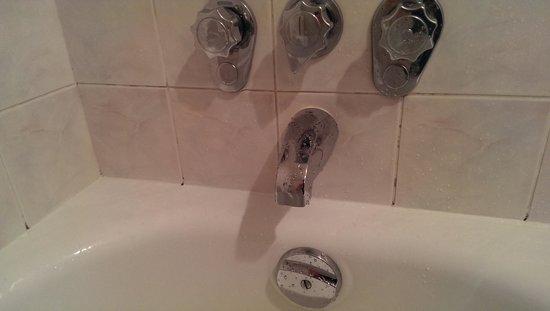 Century Plaza Hotel & Spa: Moldy shower #2