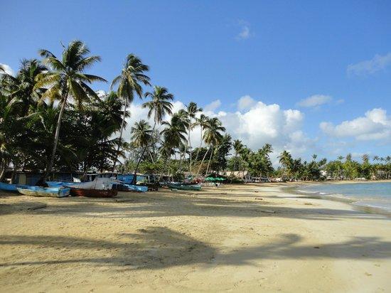 Hotel Villas Las Palmas al Mar : plage à proximité