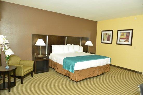 Whitney Inn & Suites: Brand New Business King room