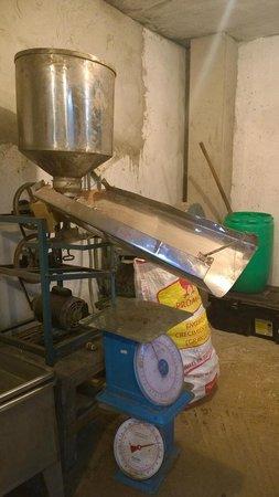 El Quetzal de Mindo Chocolate Tour: Old School factory apparatus