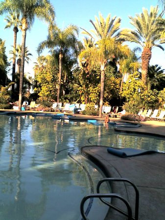 Glen Ivy Hot Springs: This is where you float and look at the palm trees and the sky.