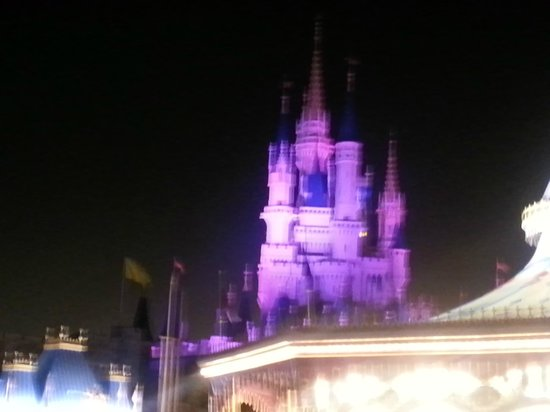 Happily Ever After Fireworks: pretty