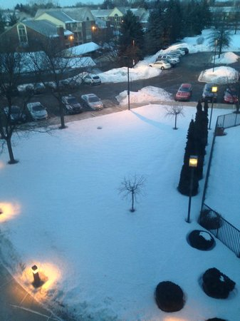 Detroit Marriott Southfield : View from 4th floor room