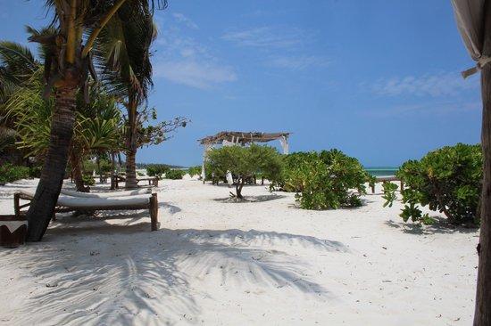 Next Paradise Boutique Resort : .