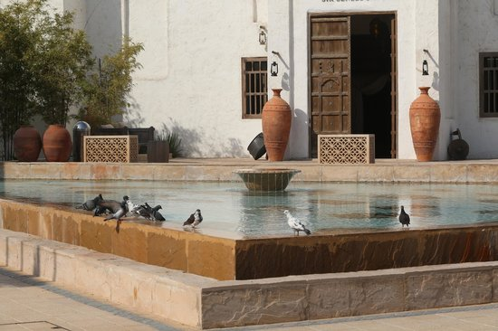Sharq Village & Spa: Entrance to the Spa with some of the lovely birds.