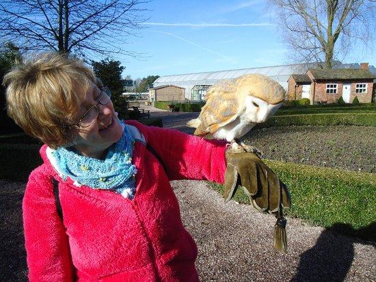 Stockley Farm Birds of Prey Centre: So pleased!
