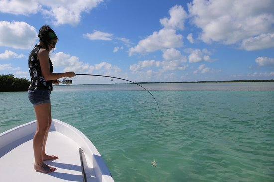 GoFish Belize: Catching some smaller fish by myself!