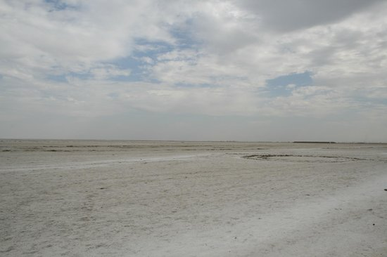 White Rann o White Desert