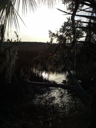 Fort McAllister State Historic Park Campground: looking out onto the river
