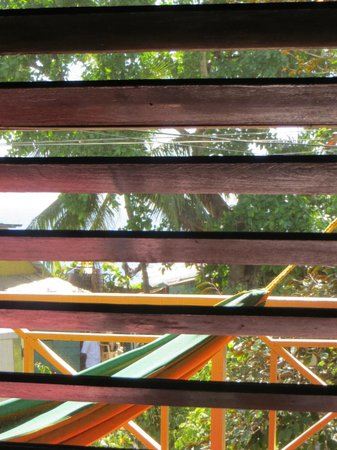 Catcha Falling Star Gardens: A colorful view through the shutters