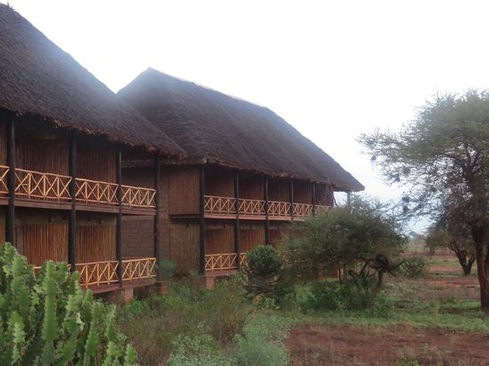 Ngutuni Safari Lodge : ngutuni lodge
