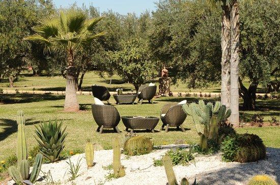 Palais Amador: Jardin / Garden