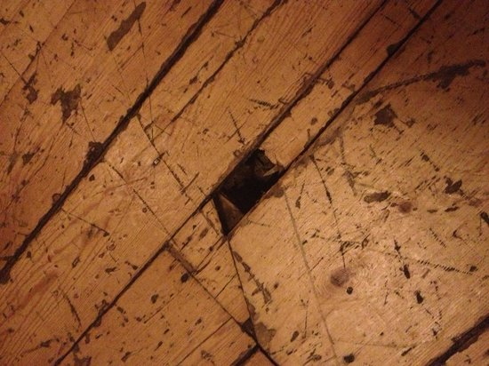 The Marchmont Arms: Heel catching hole- almost lost my shoe