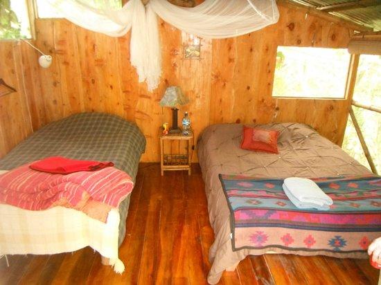 Casa Mariposa Hostel & Guesthouse: Notre Jungle room....wowwwwwwww !