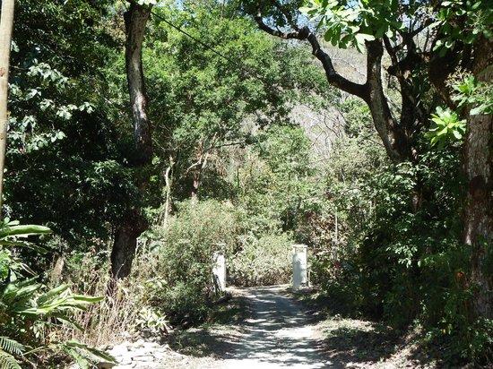 Star Mountain Jungle Lodge : breathtaking views
