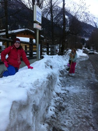 Chalet les Frenes: convenient bus stop just outside the chalet