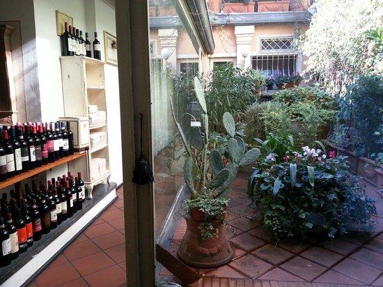 Aeroscalo : l'angolo verde...e l'angolo dei vini