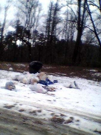 Etowah River Campground: more garbage