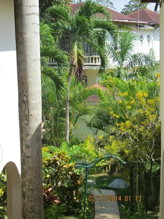Mariposa Hideaway: gardens