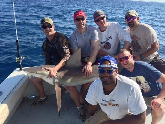 Key West Fishing Connection - Private Charters: Sandbar Shark