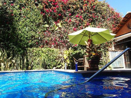 Casa del Sol : Pool Area