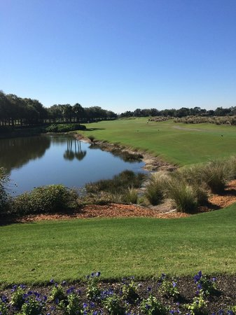 Villas of Grand Cypress : View over the golf course