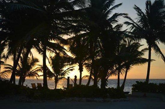 Belizean Shores Resort : Sunrise view looking towards the ocean