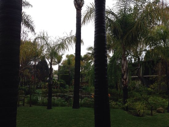 Ramada Santa Barbara: It happen to be a rainy day, but the ground here still look great.