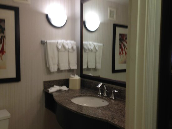 Hilton Garden Inn Atlanta Perimeter Center: Bathroom