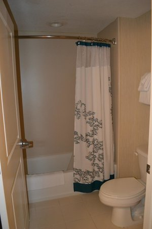 Residence Inn Cape Canaveral Cocoa Beach: tub and toilet in Master bedroom