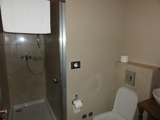 Hotel Jagerhorn: Bathroom