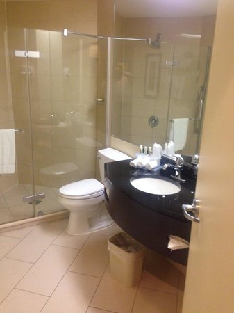 Holiday Inn Express Hotel & Suites Montreal Airport : Modern, spacious bathroom