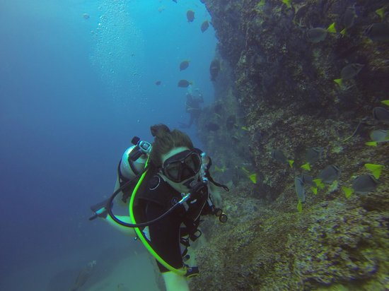Dive Cabo : The Pinnacle