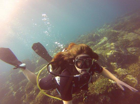 Dive Cabo : Whale's Head Dive Site