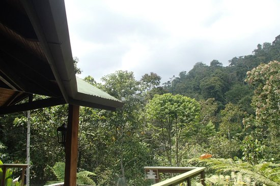 Pacuare Lodge: View from our suite (Linda Vista - Puma)