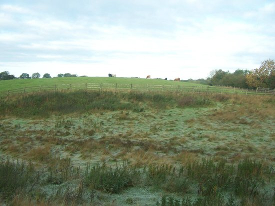 Lawcus Farm Guest House: View from our window at the pasture-frost on the grass