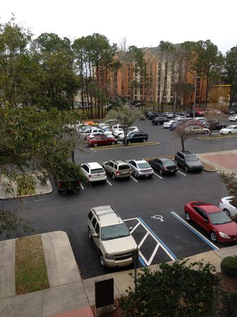 Jacksonville Marriott: Parking Lot View from Room